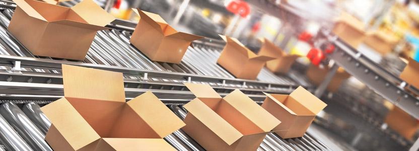 Schädlinge in der Verpackungsindustrie erfolgreich bekämpfen
